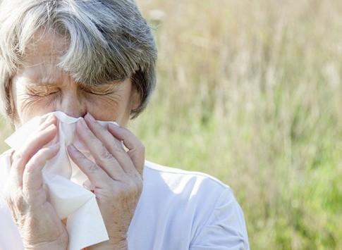 Įkvepiamų alergenų rinkinys MAXI